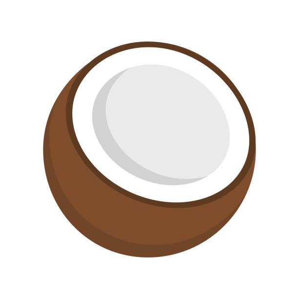 Coco diseño plano - ilustración de arte vectorial
