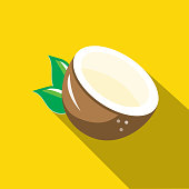 Vector illustration of a coconut fruit Flat Design themed Icon with shadow. Vector eps 10, fully editable.