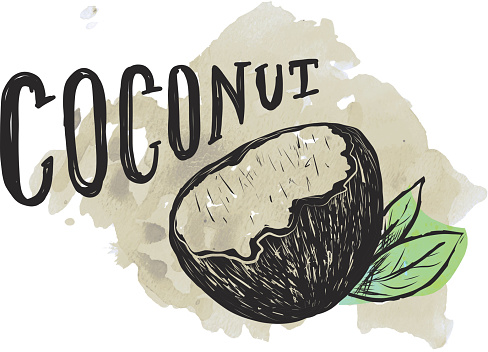 Coconut hand lettering on watercolor background