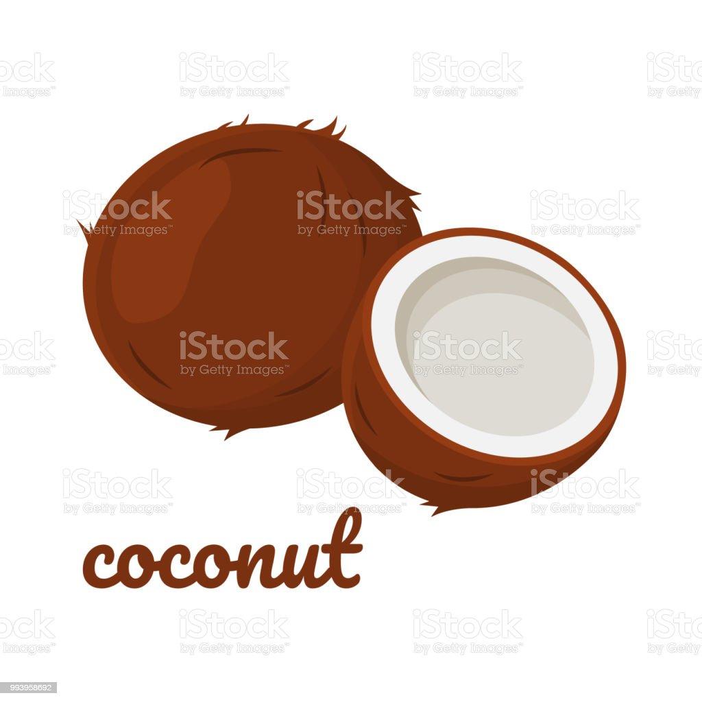 Icono de coco. Ilustración de vector - ilustración de arte vectorial