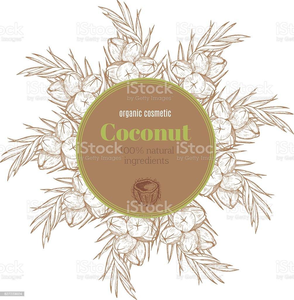 Etiqueta de coco - ilustración de arte vectorial
