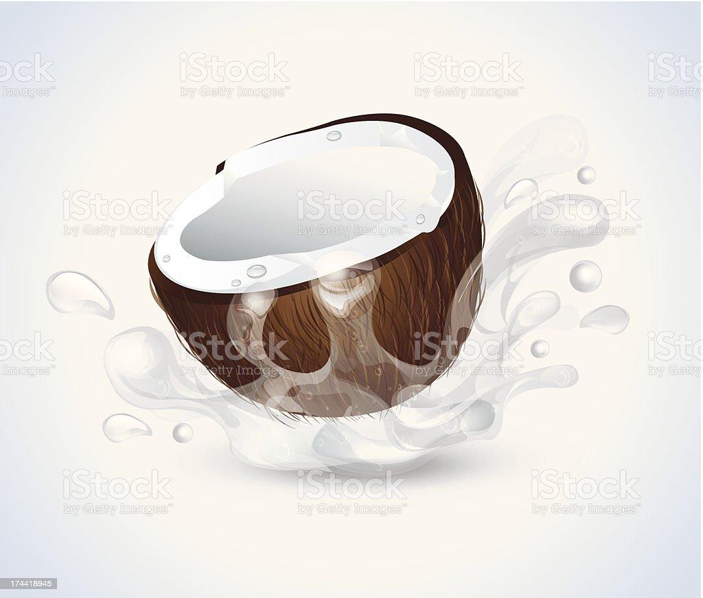 Coconut Splash royalty-free stock vector art