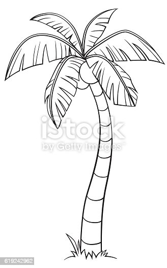Coconut Tree Cartoon Style Stock Vector Art & More Images