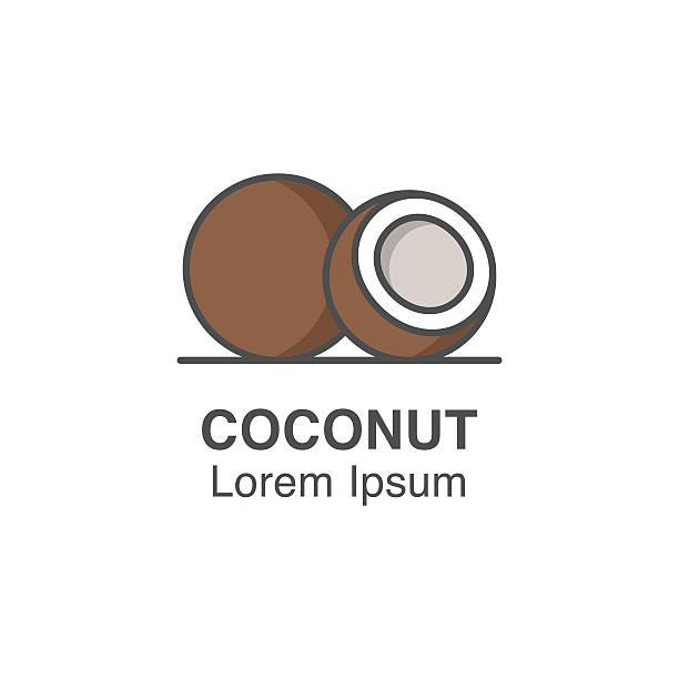 ilustrações, clipart, desenhos animados e ícones de ícone de vetor de coco. - coqueiro