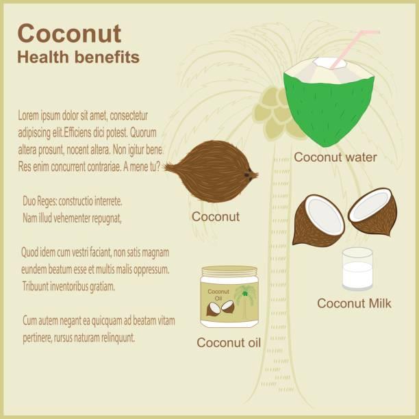 Coconut - ilustración de arte vectorial