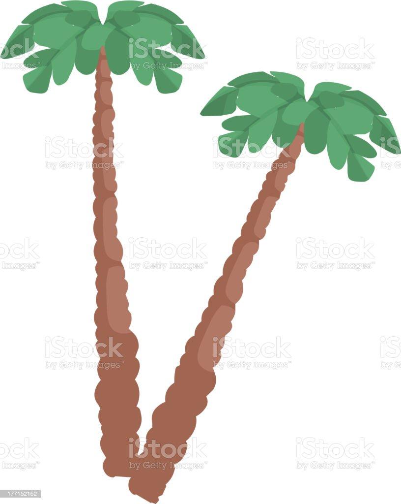coconuts vector art illustration