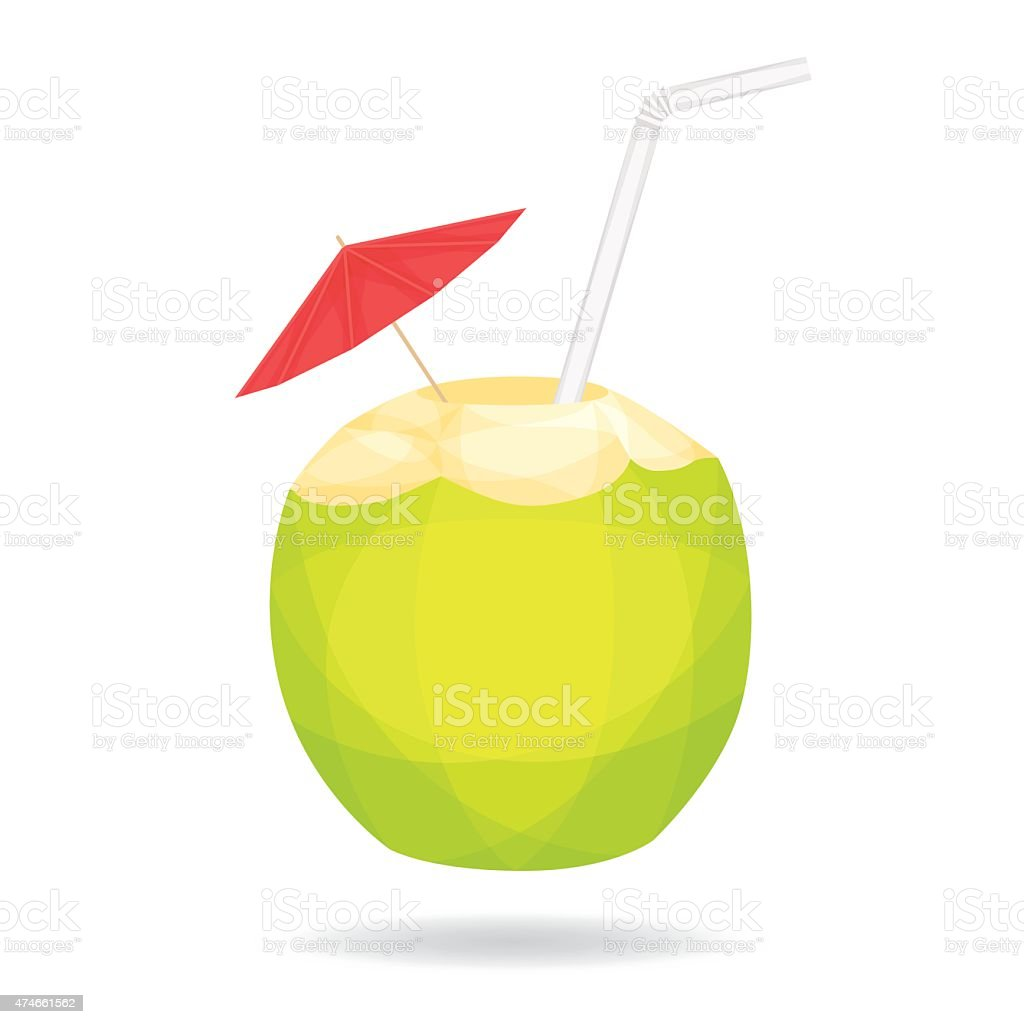 Cocout on white background vector art illustration