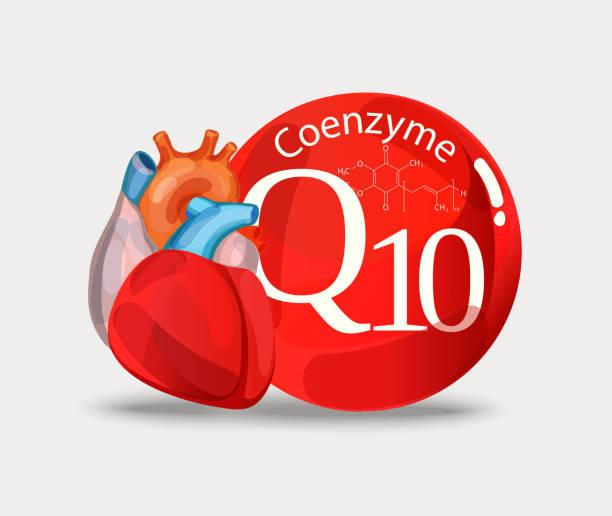 koenzym q10 i serce. - coenzyme q10 stock illustrations