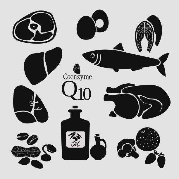 Coenzyme Q10 vector art illustration