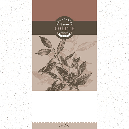 Coffee banner vector template