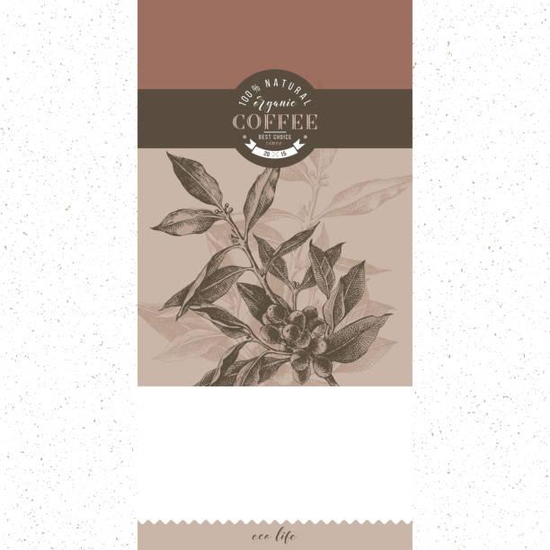 커피 배너 벡터 템플릿 - coffee stock illustrations