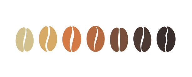 coffee bean set. isolated coffe beans on white background - coffee stock illustrations