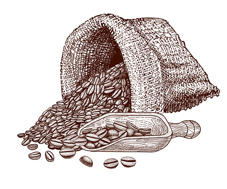 Coffee Beans And Sack Or Bag For Coffee Hand Drawn Vector ...