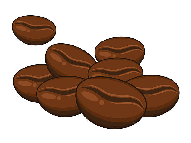 Coffee beans vector art illustration