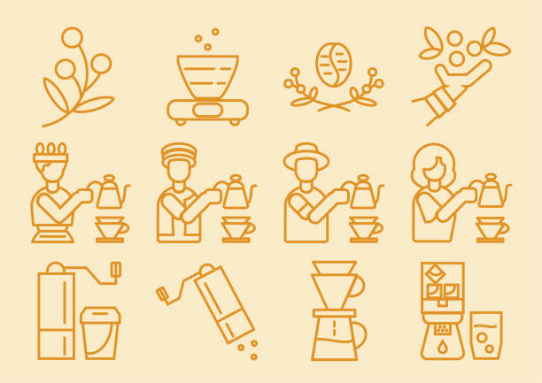 illustrazioni stock, clip art, cartoni animati e icone di tendenza di coffee dripper icon with brewing process - coffee farmer