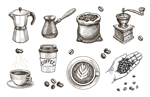 Coffee hand drawn. Hand with roasted beans sketch. Espresso, cappucchino cap, Coffee mill, sack, Engraved vintage vector set for cafe, restaurant set.