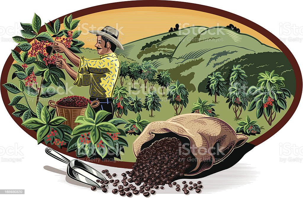 coffee in oval frame vector art illustration
