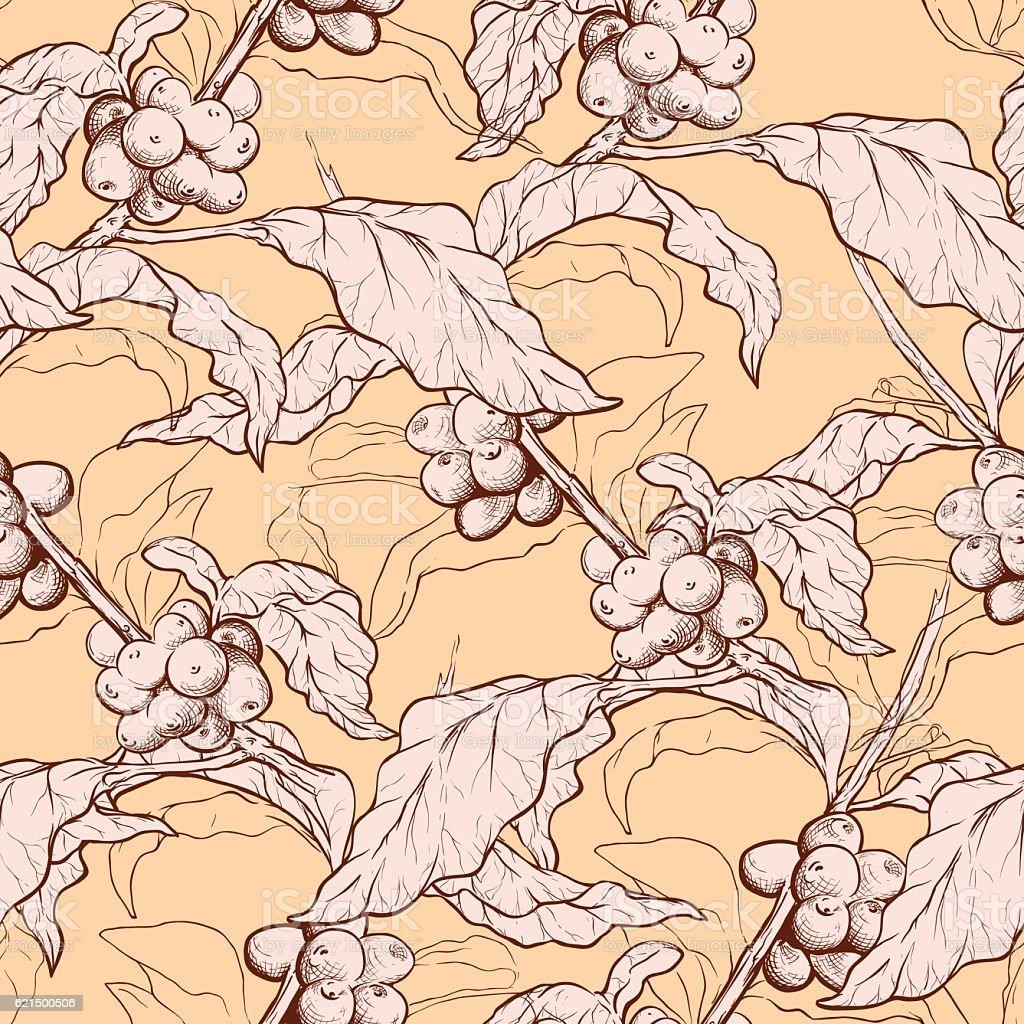 Coffee plant and beans pattern coffee plant and beans pattern – cliparts vectoriels et plus d'images de aliment libre de droits