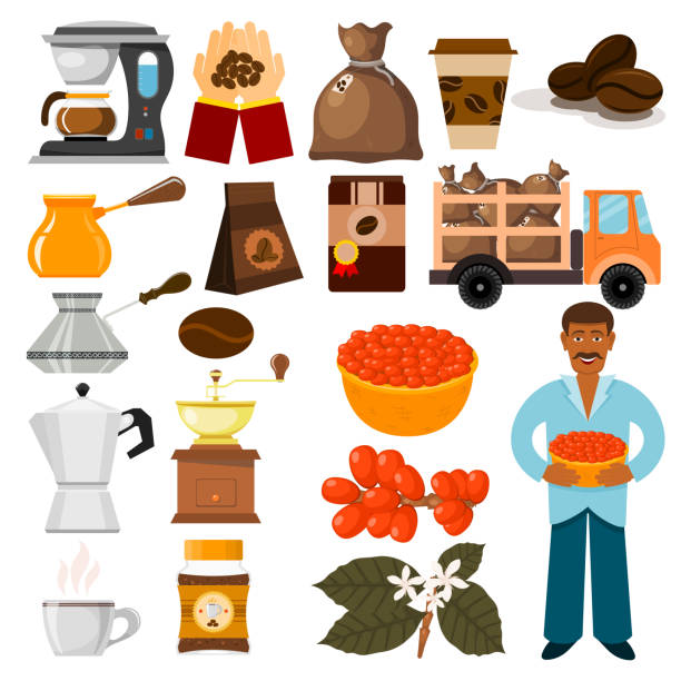 illustrazioni stock, clip art, cartoni animati e icone di tendenza di coffee plantation vector beans, tree and transportation cafe coffee-bean illustration - coffee farmer