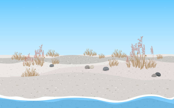 coffee landscape of the beach horizon over water stock illustrations