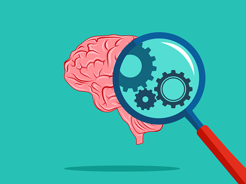 A cog in the magnifying glass and the brain. Brain system concept
