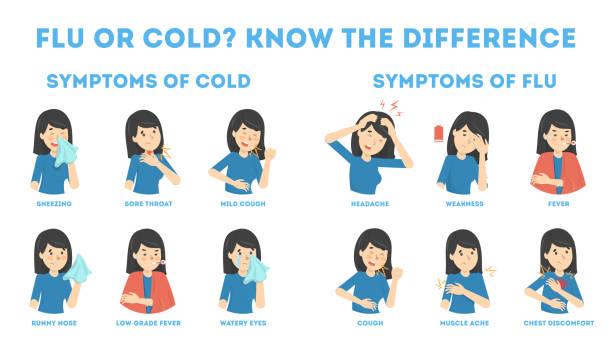 erkältungs-und grippe-symptome infografik - erkältung und grippe stock-grafiken, -clipart, -cartoons und -symbole