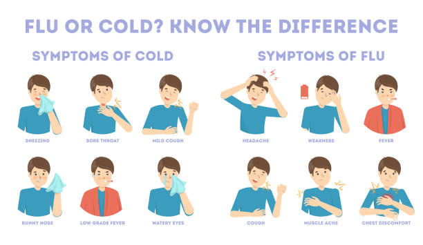 Cold and flu symptoms infographic vector art illustration