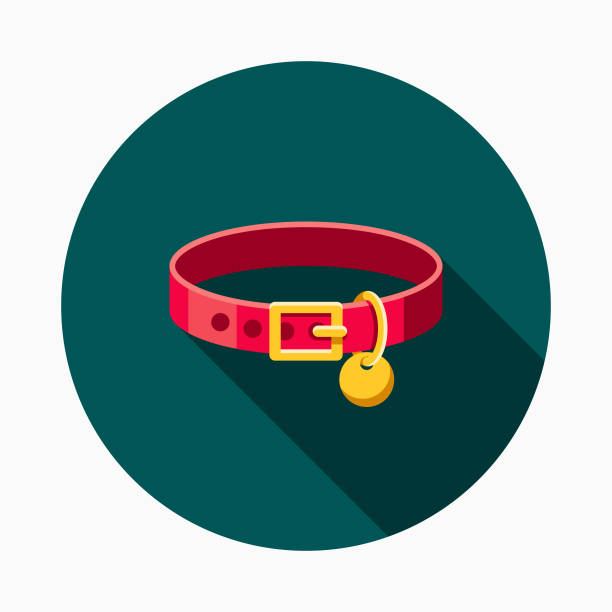 Collar Flat Design Pet Care Icon A flat design styled pet care icon with a long side shadow. Color swatches are global so it's easy to edit and change the colors. collar stock illustrations
