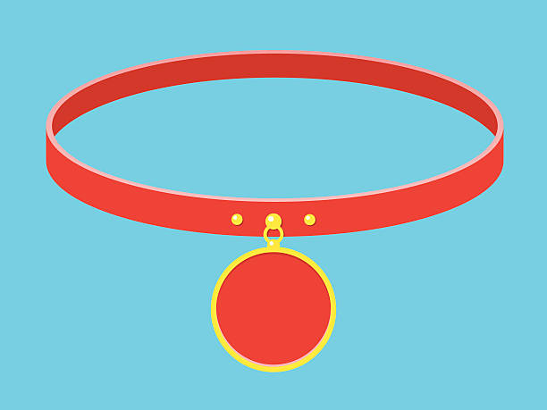 kragen/halskette mit label - hundehalsbänder stock-grafiken, -clipart, -cartoons und -symbole