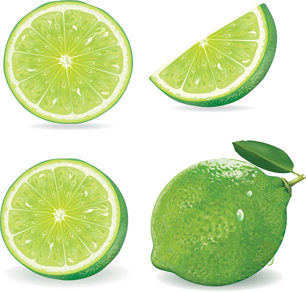 Collection Fresh lime and slice, Isolated on white background.vector Collection Fresh lime and slice, Isolated on white background.vector lime stock illustrations