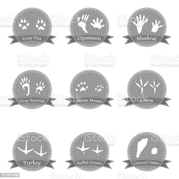 Collection icons with animal footprints vector id514575288?b=1&k=6&m=514575288&s=612x612&h=gwcv35qnzdose1237jg zdyuws 2en hakeybe3dgnm=