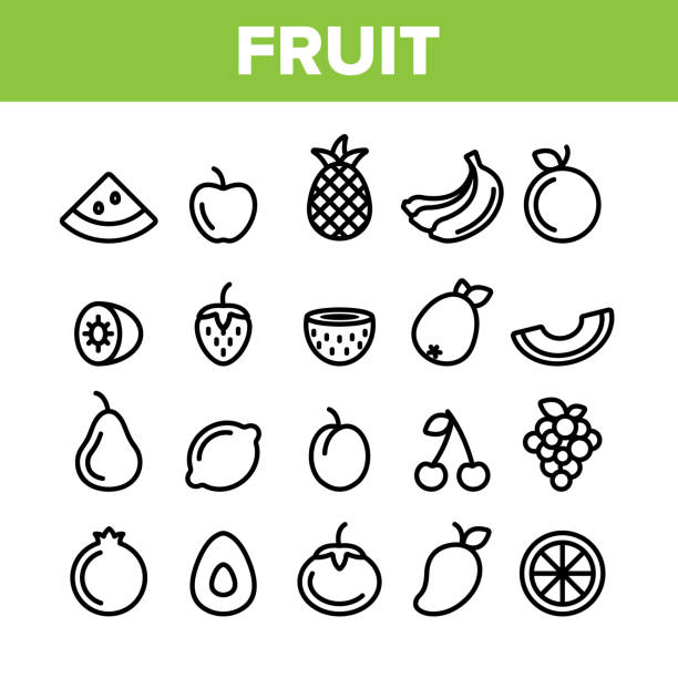 Collection Nature Fruit Elements Vector Icons Set Collection Nature Fruit Elements Vector Icons Set Thin Line. Pineapple And Apple, Strawberry And Grape, Cherry And Lemon Delicious Fruit Concept Linear Pictograms. Monochrome Contour Illustrations avocado symbols stock illustrations