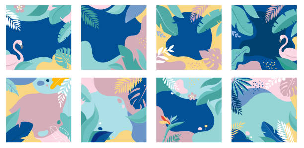 ilustrações de stock, clip art, desenhos animados e ícones de collection of abstract background designs - summer sale, social media promotional content. vector illustration - angiospermas