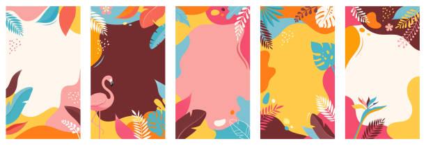 ilustrações de stock, clip art, desenhos animados e ícones de collection of abstract background designs, summer sale, social media promotional content. vector illustration - angiospermas