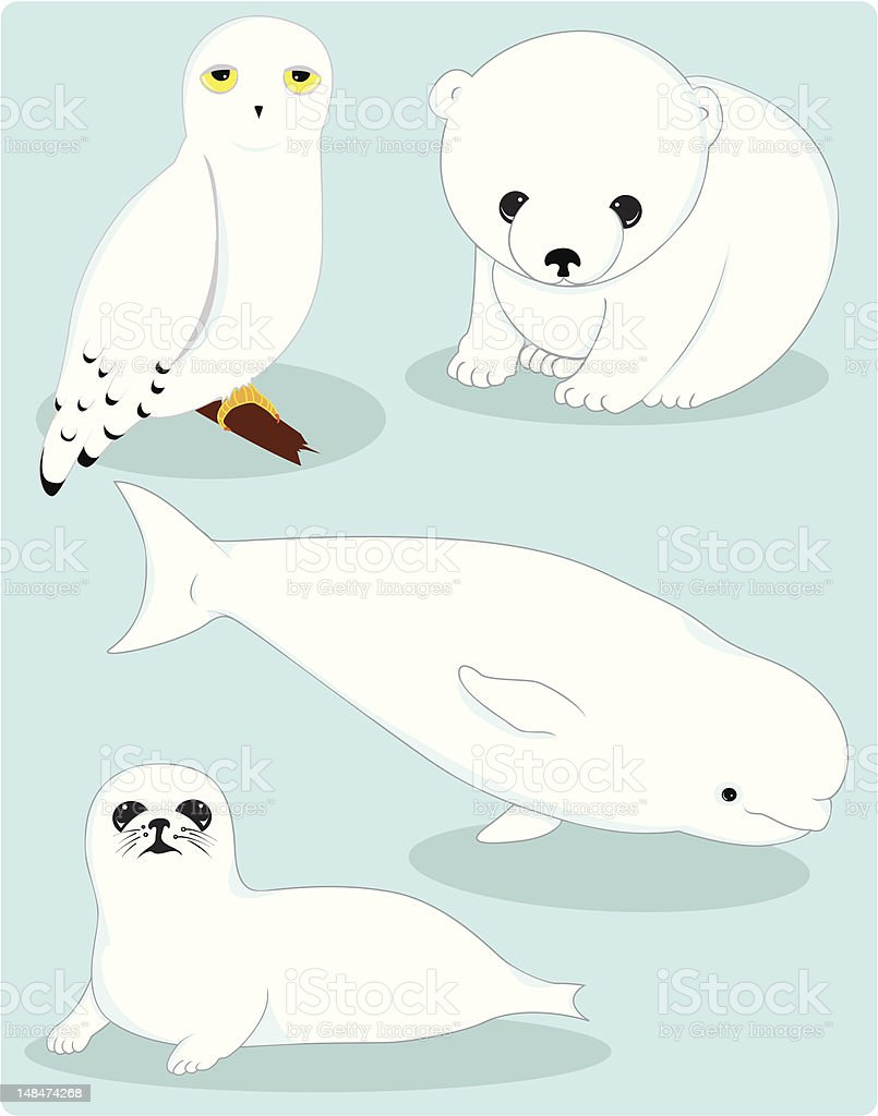 collection of arctic animals vector art illustration