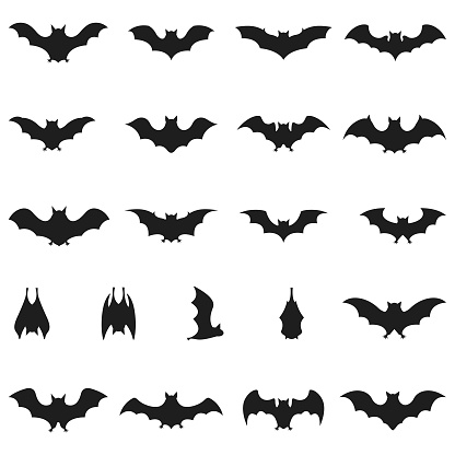 Collection of Bat icon set