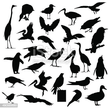 istock Collection of bird silhouettes 490989685