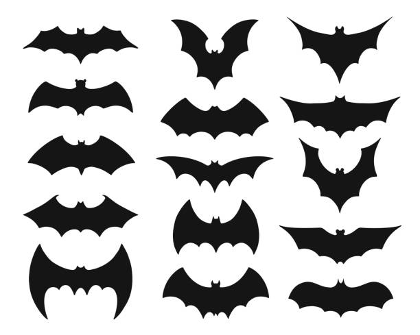Collection of black bat silouettes or symbols Bat symbol set. Collection of black silhouettes of mysterious flying nocturnal animals with flapping wings isolated on white background. Halloween decoration. Flat monochrome vector illustration. bat stock illustrations