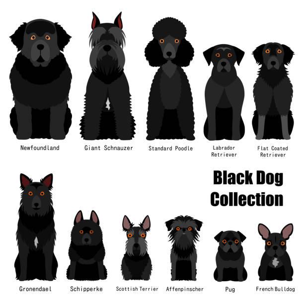 黒い犬のコレクション ベクターアートイラスト
