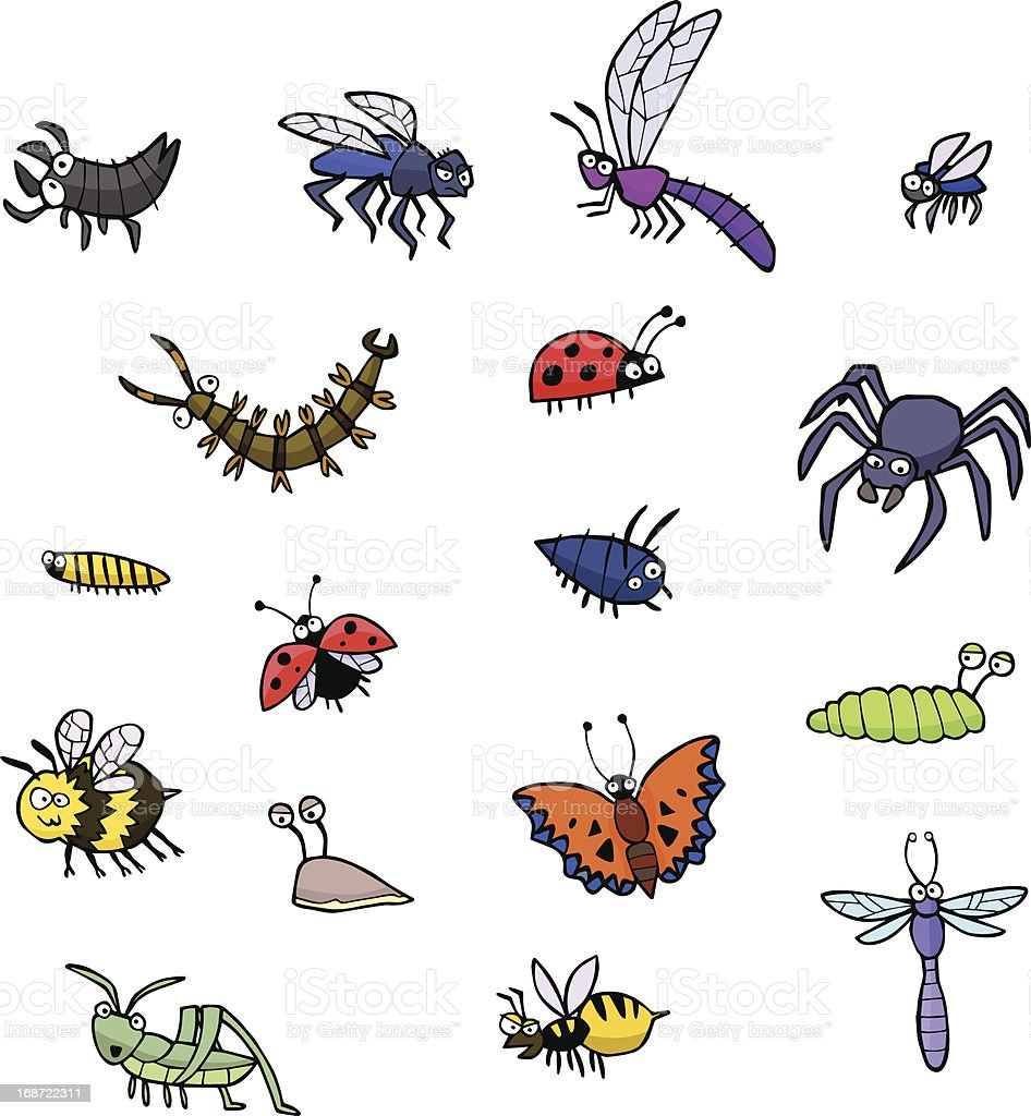 Collection of bugs royalty-free stock vector art