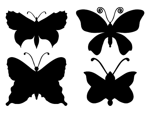 Collection of butterfly silhouettes.