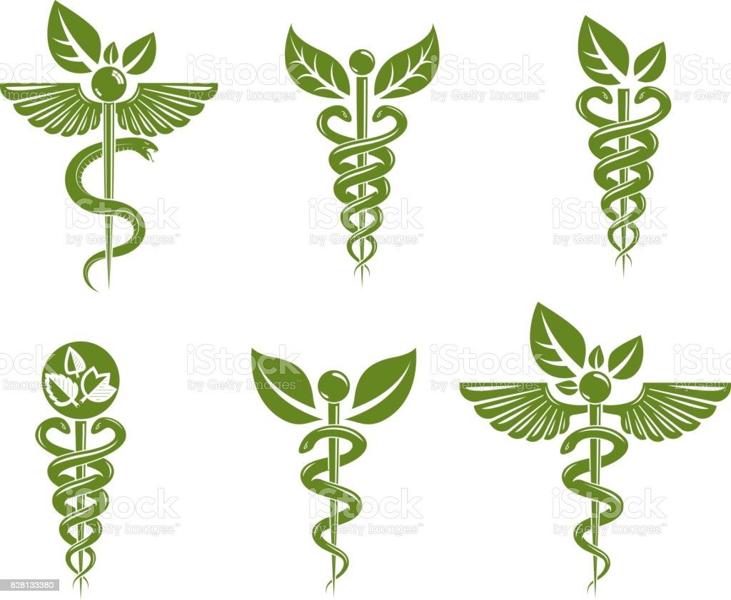 Collection of Caduceus illustrations composed with poisonous snakes and bird wings, healthcare conceptual vector illustrations. Alternative medicine theme. vector art illustration