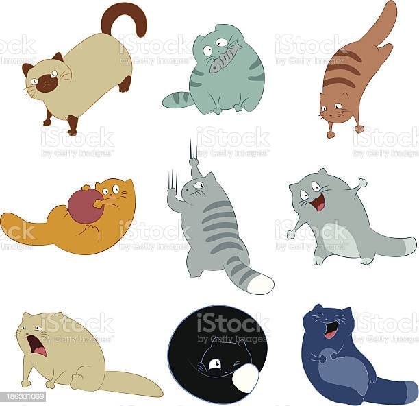 Collection of cat icons vector id186331069?b=1&k=6&m=186331069&s=612x612&h=a6yvsvlvpvydemaramrbo4iabhu  e3zbiiba kwgf4=