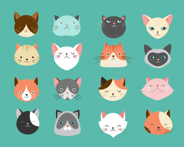 Collection of cats illustrations Collection of cats illustrations, icons, avatars bobtail squid stock illustrations