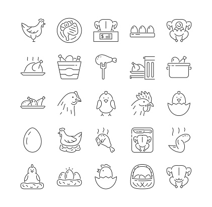 Collection of Chicken, turkey and poultry icons