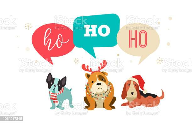 Collection of christmas dogs merry christmas illustrations of cute vector id1034217846?b=1&k=6&m=1034217846&s=612x612&h=q2fssze3yjnws0pby1xyiampyfmkphvyg4l0ujt7cxo=