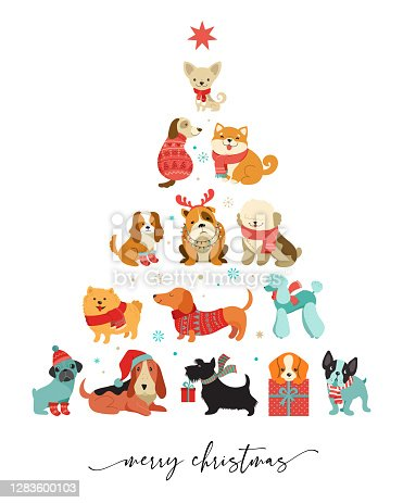 istock Collection of Christmas dogs, Merry Christmas illustrations of cute pets with accessories like a knitted hats, sweaters, scarfs, vector graphic elements 1283600103