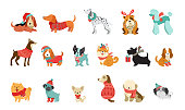 istock Collection of Christmas dogs, Merry Christmas illustrations of cute pets with accessories like a knitted hats, sweaters, scarfs, vector graphic elements 1284636189