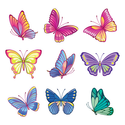Collection of colorful butterflies. Imitation of watercolor butterflies. Set of decorative, abstract butterflies or moths on a white background.  Isolated illustration for stickers or print. Vector.
