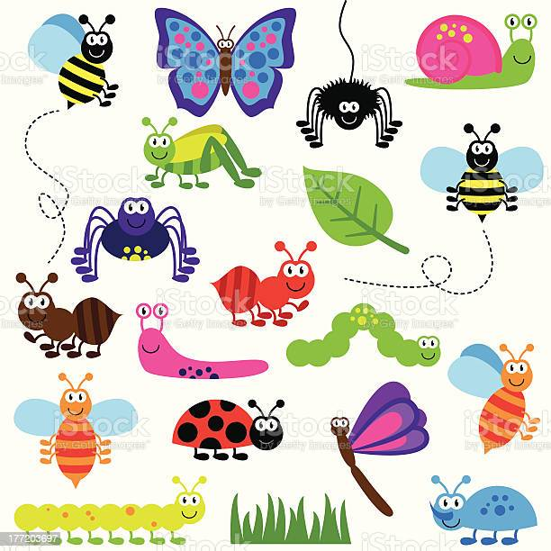 Collection of cute and colorful vector insects vector id177203697?b=1&k=6&m=177203697&s=612x612&h=s1totsp2owro 1qo uen5y4xhazgi55dhwgflzok8vg=